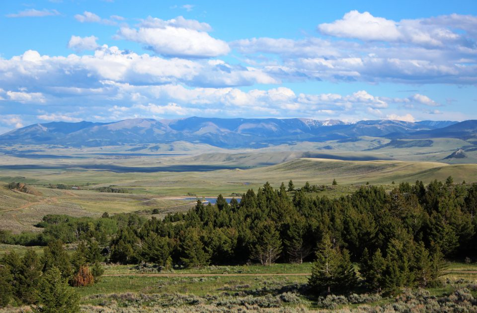 Welcome to Big Sky Country | Bonanza Creek Guest Ranch
