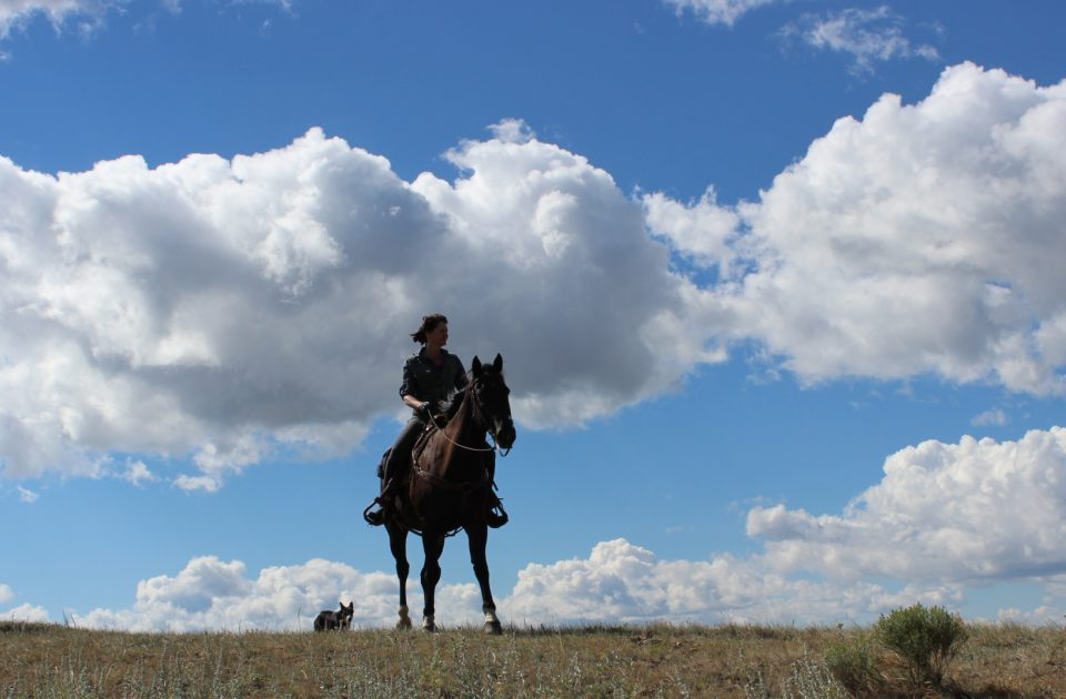 Authentic Western Vacation in Montana