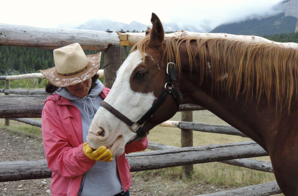 Horsemanship at Deep Canyon Guest Ranch