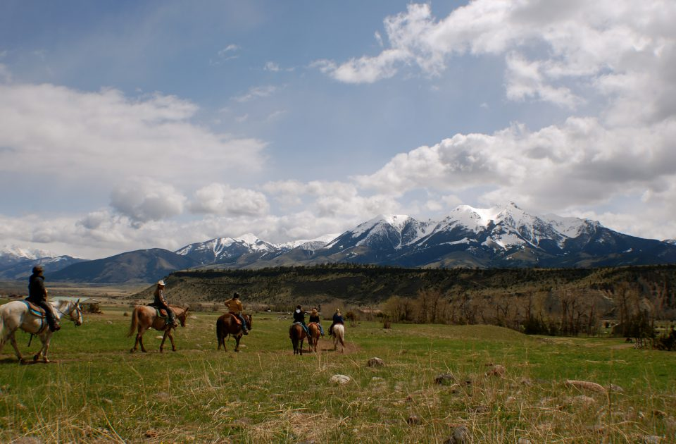 Trail Ride through Montana's Paradise Valley