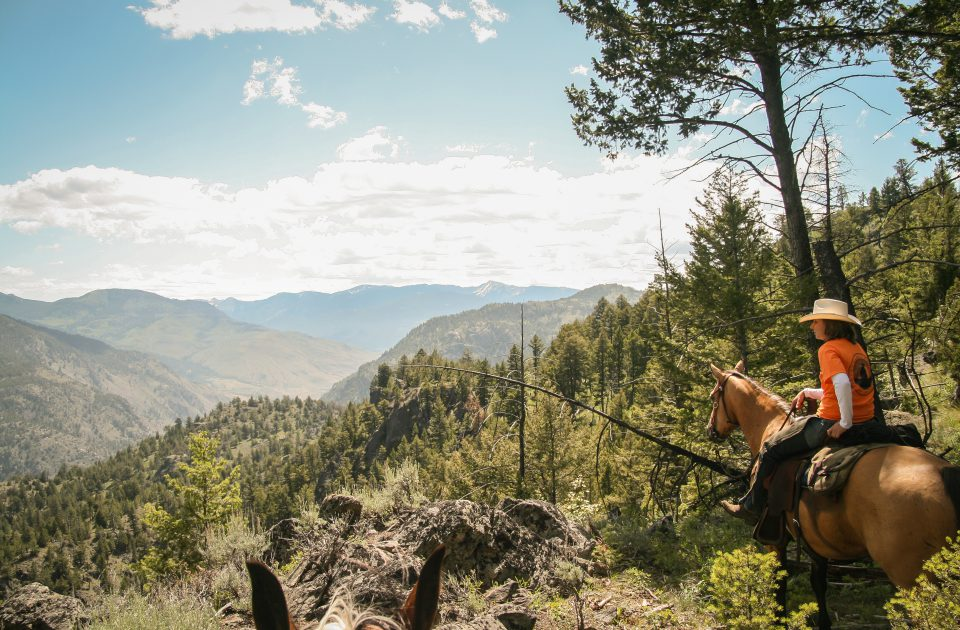 Breathtaking views at the end of a beautiful trail ride | Horseback Riding