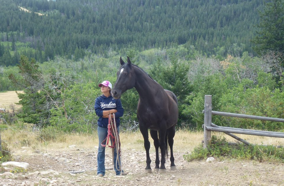 A partnership between horse and rider on Deep Canyon Guest Ranch