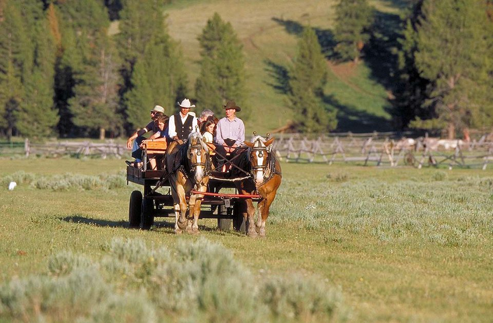Wagon Ride | Activity at Nine Quarter Circle Ranch