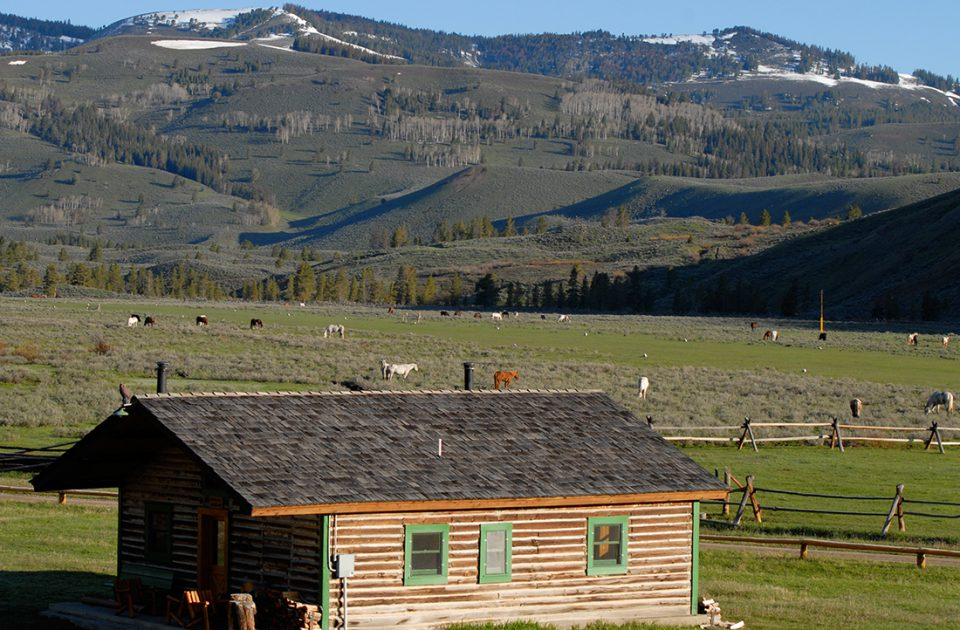 Nine Quarter Circle | Montana Dude Ranch Scenery