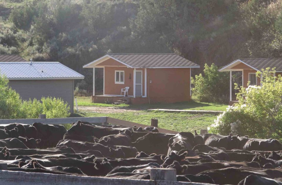 Dude Ranch Cabins & Accommodations