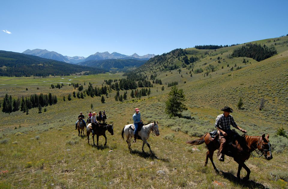 Horseback Riding at Nine Quarter Circle Ranch