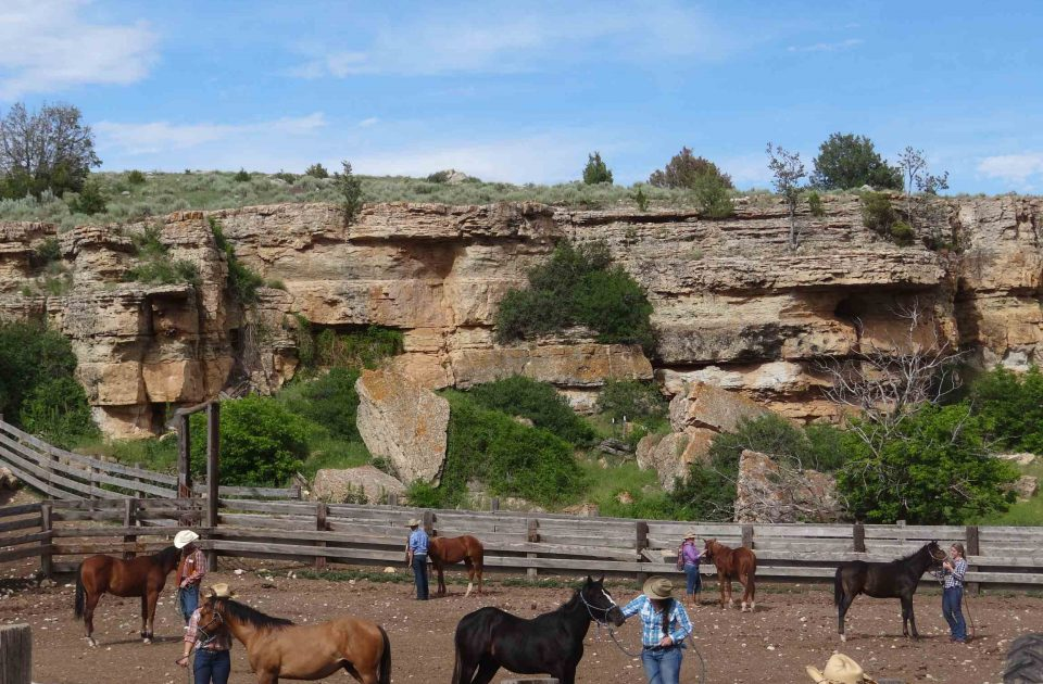 Horsemanship skills are vital to working on a Dude Ranch