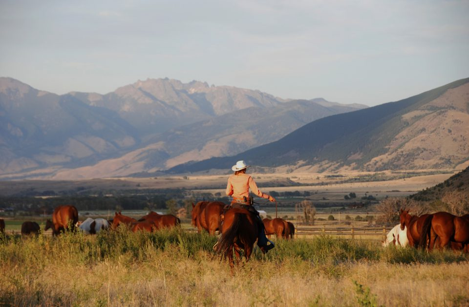 Vacation on a Montana Guest Ranch | Mountain Sky Ranch