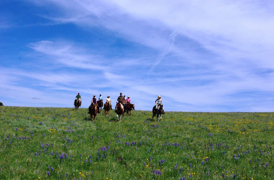 Trail Ride near Martinsdale, Montana in Central Montana