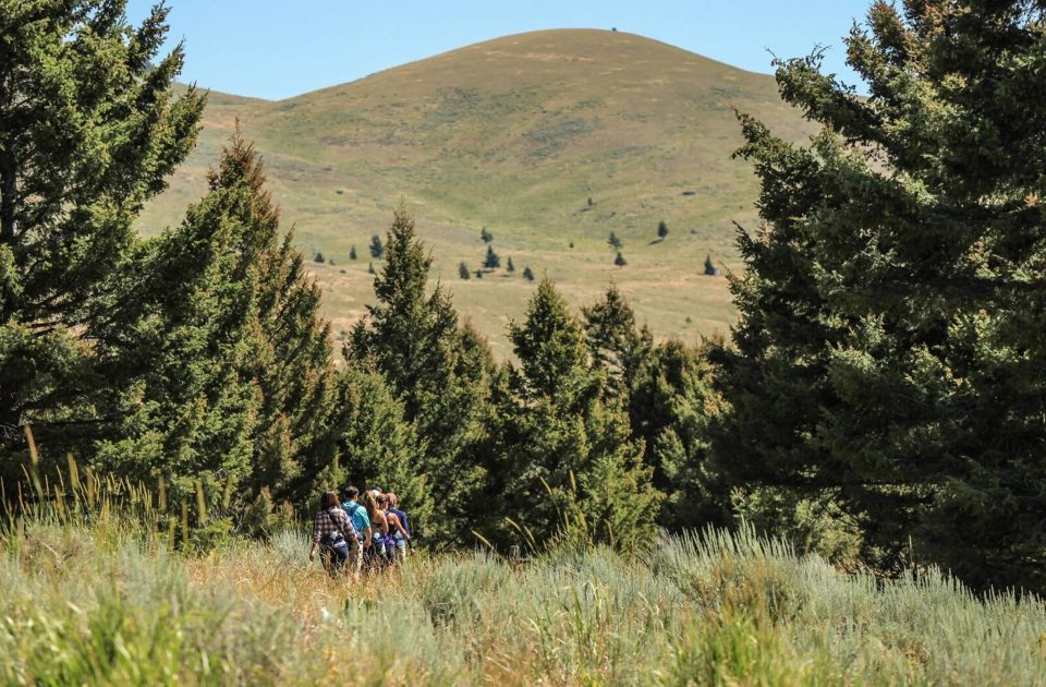 Hiking in Emigrant, Montana | Explore Paradise Valley