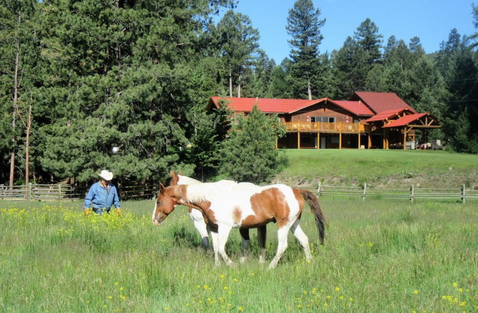Rich's Montana Guest Ranch | Dude Ranch Vacation