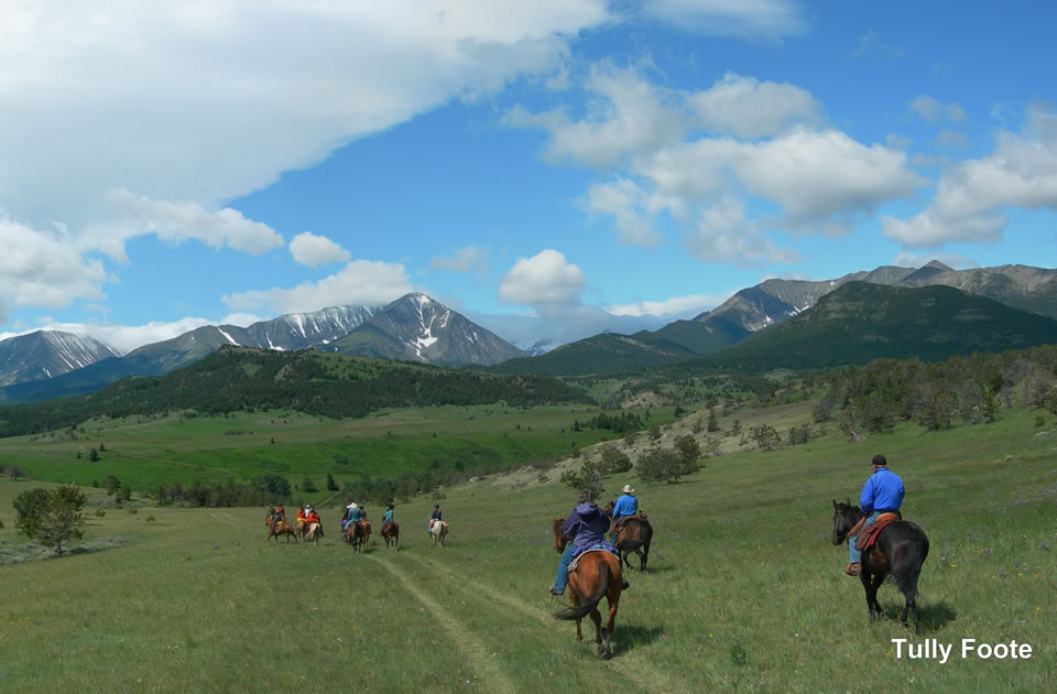 Sweet Grass Ranch Horseback Riding