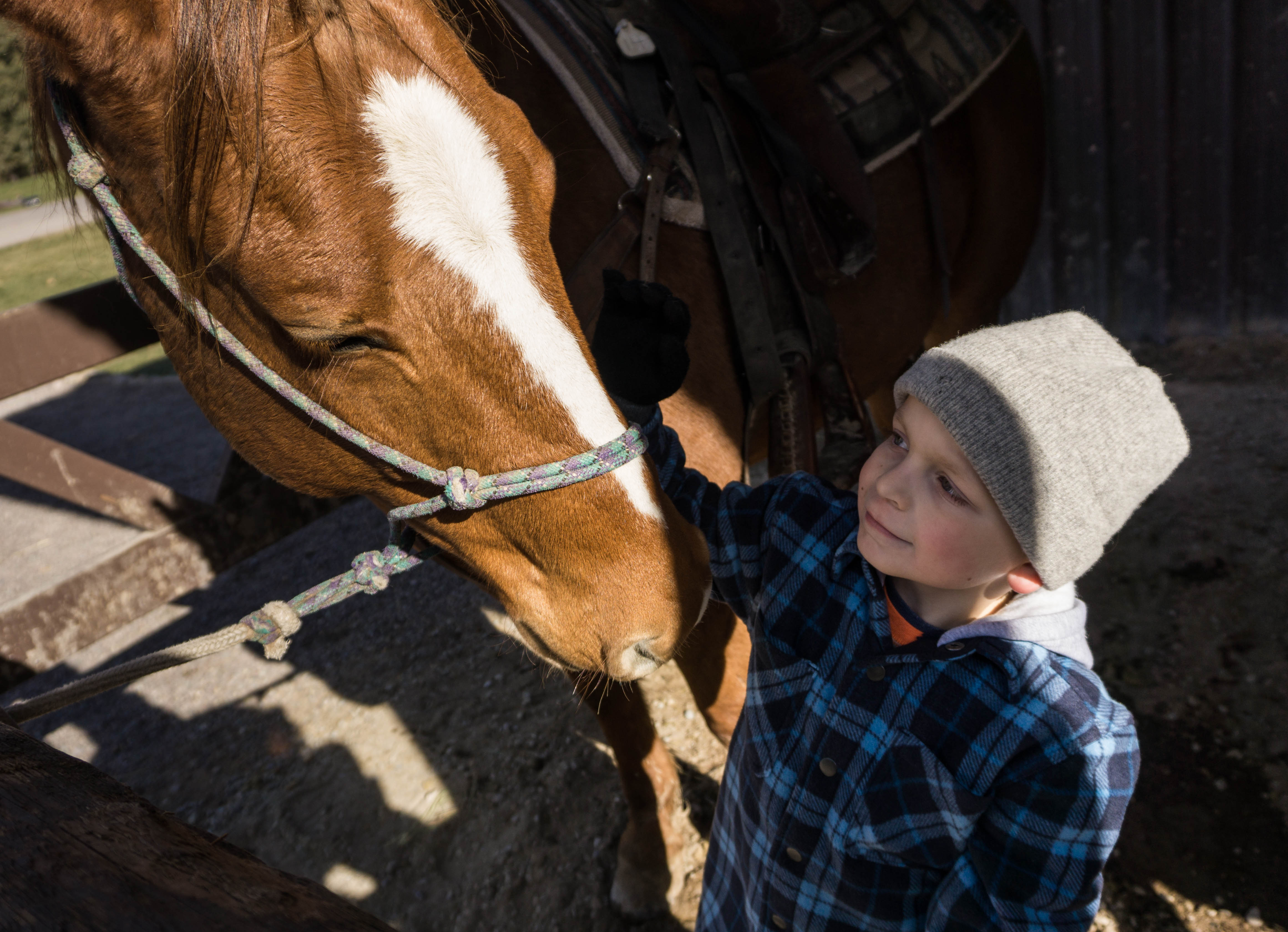 Just a Boy and His Horse | Lasting Connections
