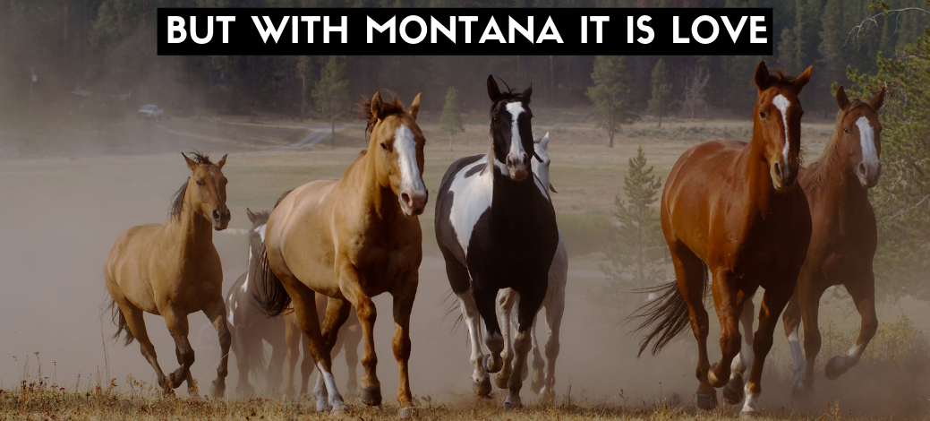 But with Montana it is love