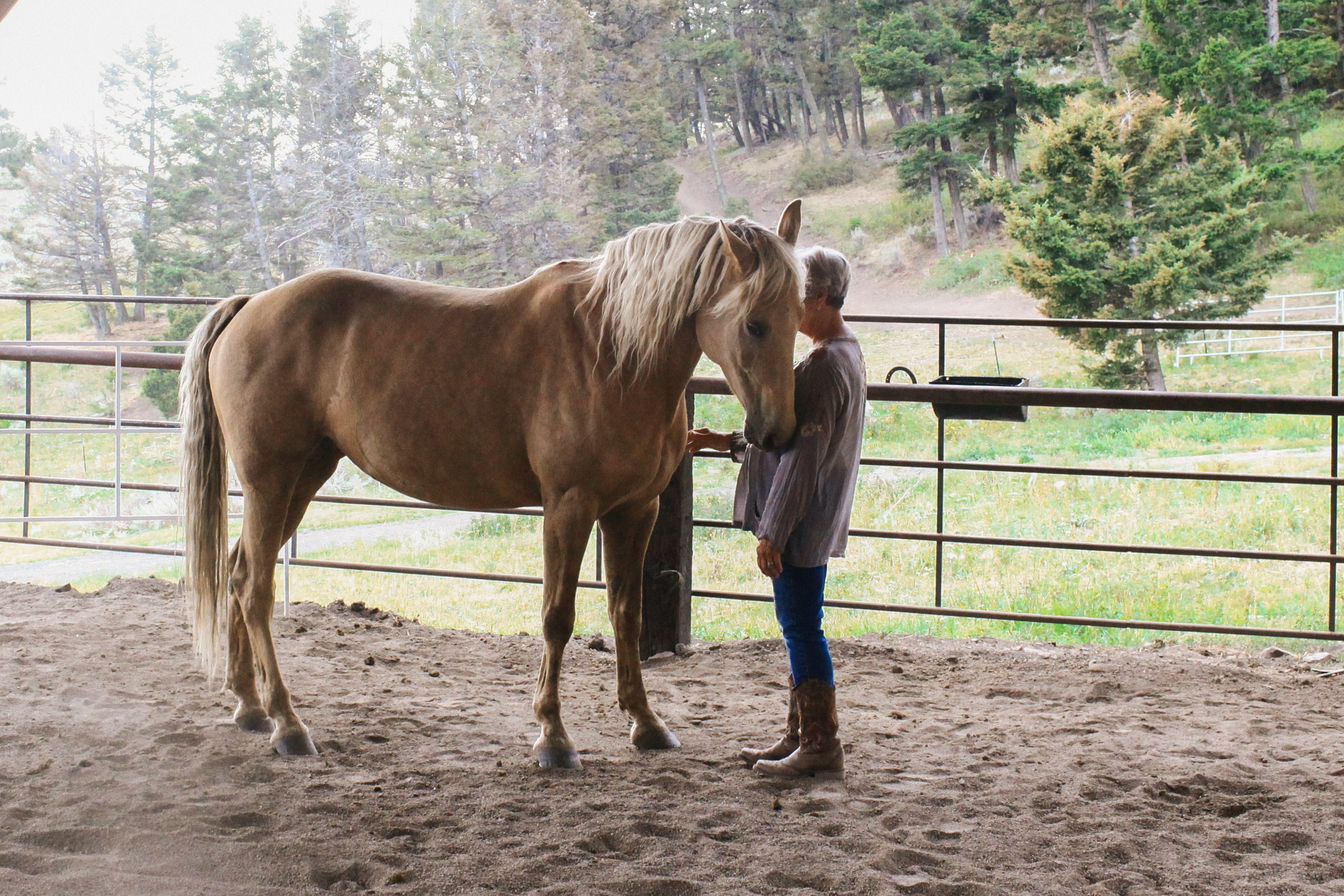 The connection you build with your horse is priceless.