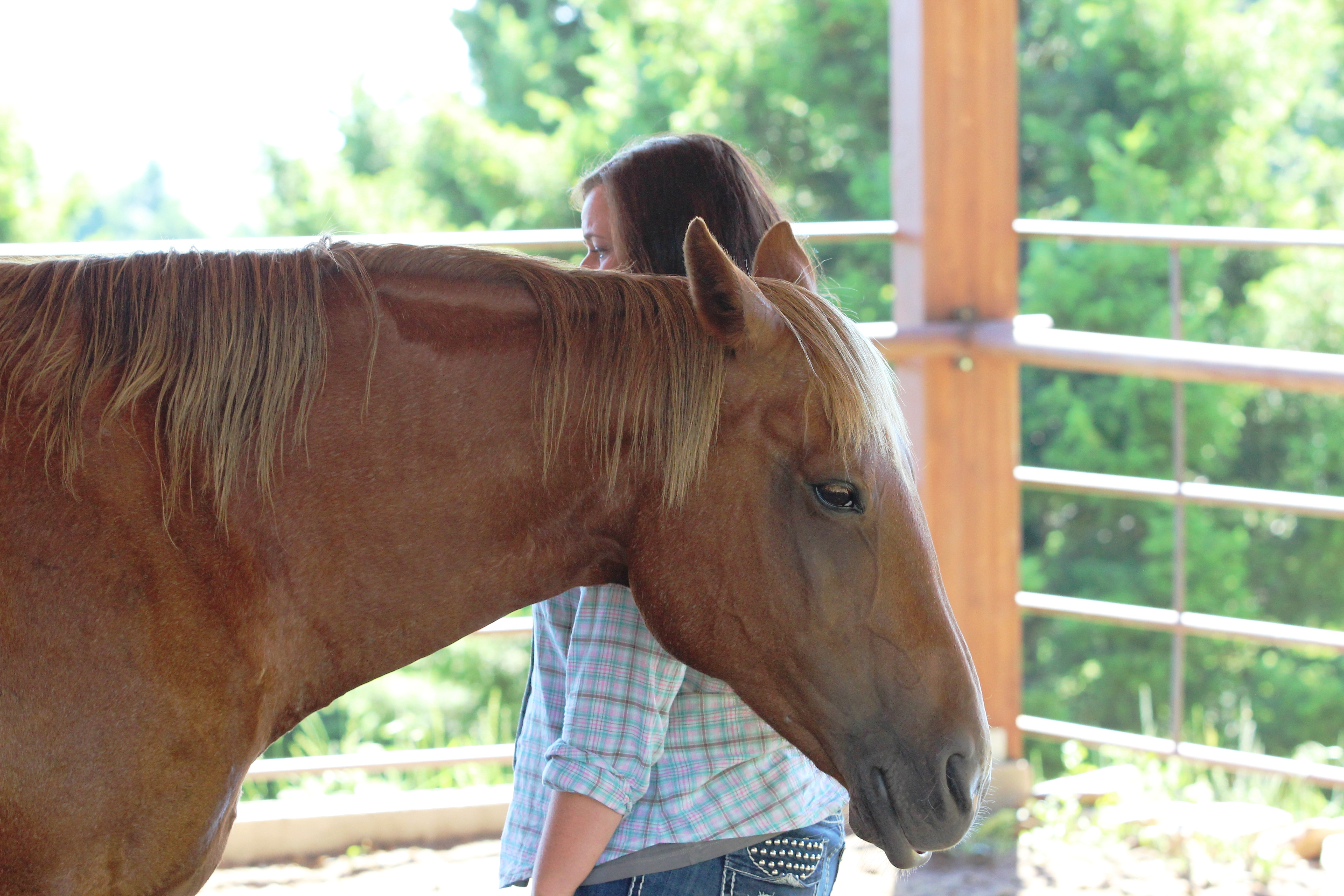 Looking for a shift in perspective? Our cowgirl retreats might be what you are looking for.