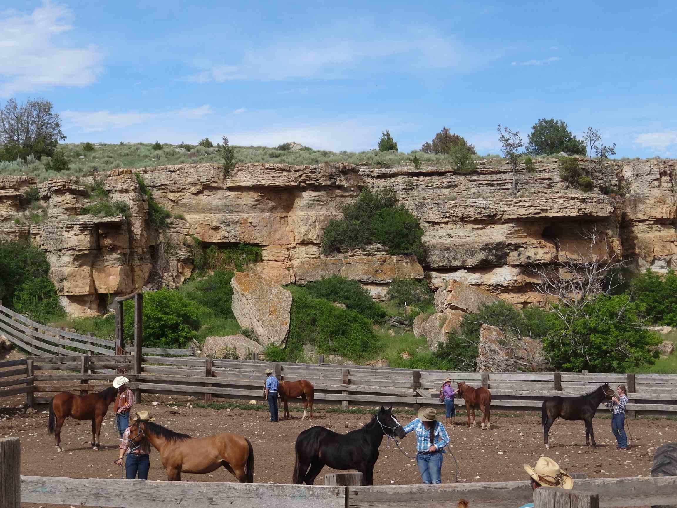 Dryhead Ranch